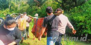 Mayat ditemukan mengapung di sungai toraja
